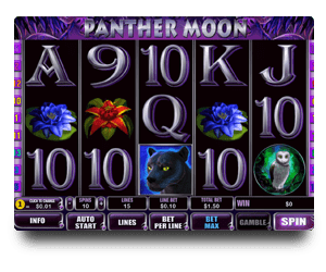 Playtech Panther Moon