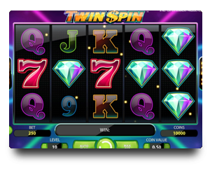 Twin Spin Slots
